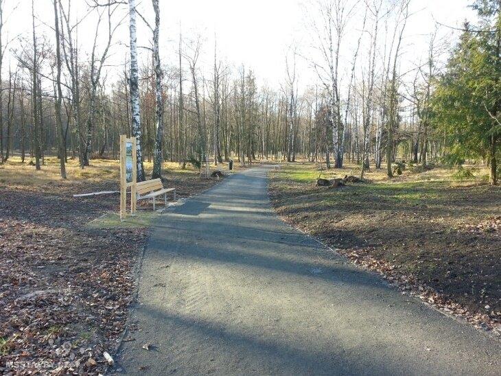 bělský les 10