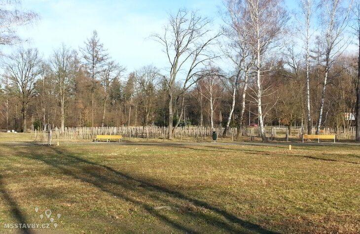 bělský les 2